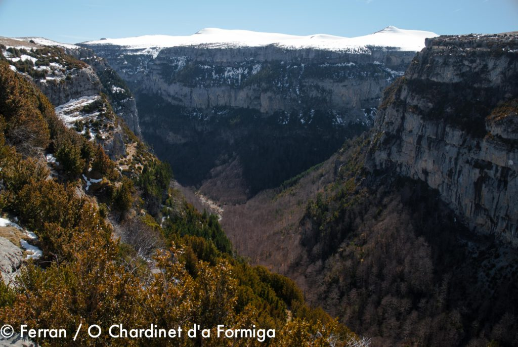 Ordesa y Monte Perdido: Cañon de Añisclo - Montaña Sensa